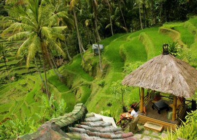 riceterrace_in_ubud1